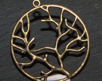 bronze tone 40mm x 5 charm tree of life pendants
