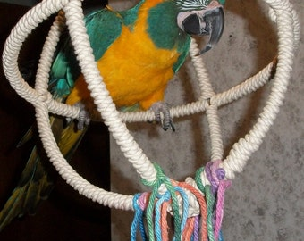 Extra Large 3 Ring Parrot Orbit Swing