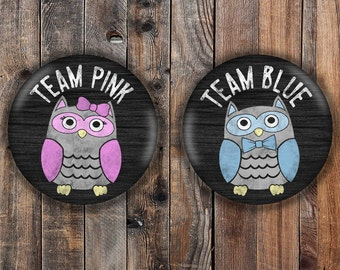 Owl pink and blue  'team pink' 'team blue' chalkboard style gender reveal pins.