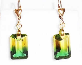 19cts Natural BOLIVIA Octagon Bi-Color Ametrine gemstones, 14kt yellow gold leverback Earrings