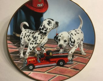 "Dalmatian Plate ""All Fired Up"""
