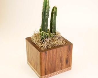 Unique Square Planter, Decorative Plant Pot, Indoor Plant Container, Modern, Succulent Planter Box, Cactus Plant Pots