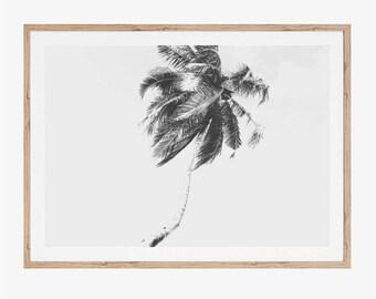 Minimalist Print, Palm Tree Art, Printable Art, Tropical Decor, Palm Tree Print, Black and White Print, Download Prints, Boho Wall Decor