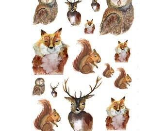Watercolour Autumn Animals Stickers 001