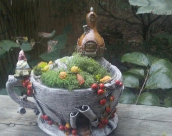 Fall Teacup Fairy Garden Kit, Birch Bark Teacup Container Planter, Squash House, Gnome. Moss