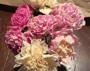 Bouquet of 6 Dried Peonies Personally Selected for You! Organic Homegrown Naturally Dried Blossoms in Full Range of Beautiful Colors