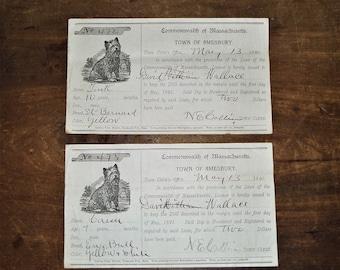 Dog Licenses from 1890 Amesbury Massachusetts- Set of 2 Licenses