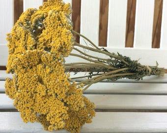 DRIED FLOWERS bunch yellow/gold YARROW Flowers Natural Fragrant Flower Bouquet Wedding Flowers Country Shabby Chic Shower Floral Supplies