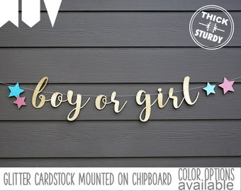 Boy or Girl banner, with stars, Gender Reveal banner, Twinkle little star, Baby Shower banner, glitter party decorations