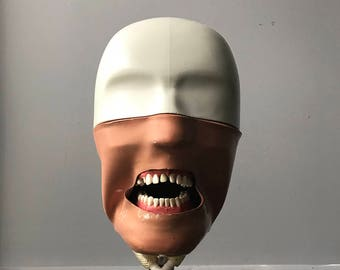 Dental Manikin with Articulating Stand