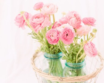 Flower Photography - Pink Ranunculus Flowers - French - Romantic - Spring Flowers - Fine Art Photography Print - Pink Teal Home Decor