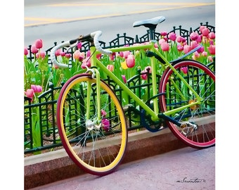 It's a Beautiful Day - Chicago - Fine art travel photography - Urban art, bike art, 8x10 or 8x8 - green, pink, red, yellow