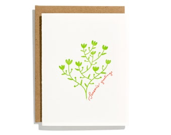 Season's Greetings - Letterpress Holiday Card - CHA234