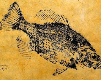 GYOTAKU fish Rubbing Crappie II  8.5 X 11 quality Art Print Panfish Cottage Decor by artist Barry Singer