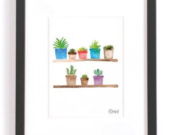 Succulent Shelf!