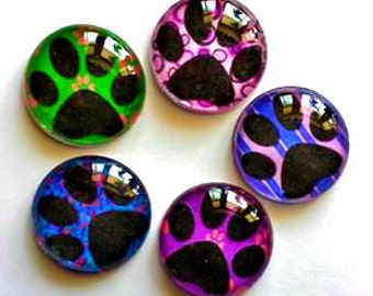 Magnets - Paw Prints - Dog Cat Lover - Vet Gift - Set of 5 - Free U.S. Shipping - 1 Inch Domed Glass Circles