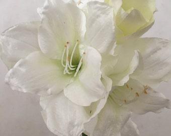 "White Amaryllis Silk Flower Bush, Artificial, Faux, Silk Wedding Flowers - 28.5"" Tall"