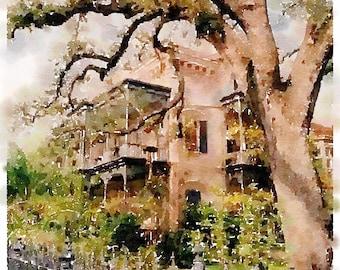 Crooked Tree House