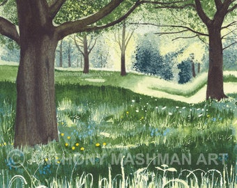 Meadow Light. Limited edition giclée print, professionally printed in the UK using inks and paper of archival quality.
