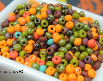Happy Harvest Fall Mix size 6 Czech seed beads
