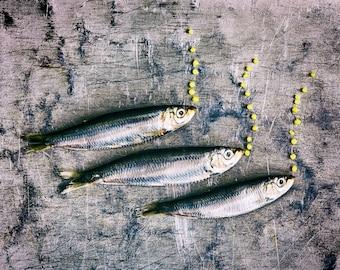 Food Art Photography, Kitchen Art, Fish & Bubbles portrait photography print - Original fine art photography by Cath Lowe