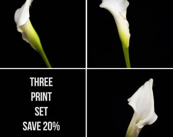 Save 20%  - Nature Print Set, White Calla Lilly, Floral Photography, Wall Art - Flower Photograph, Botanical Home Decor, Artwork for Walls