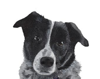 Custom Watercolour Pet Portrait, Custom Animal Portrait