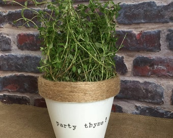 Plant pot gift 'party thyme' indoor novelty planter