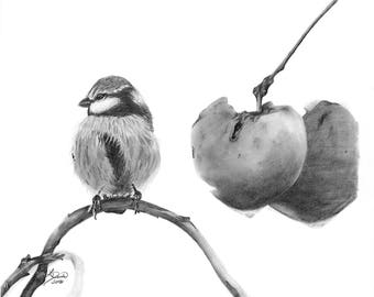 Bird with Cherries - Pencil drawing print, fine art print, wall art, home decor