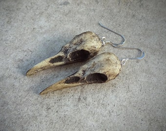 "Raven Skull Earrings Super-Mini 1.5"" Size - Cast Bone Resin Replica (Aged Finish) - Taxidermy Corvid Crow Poe Goth Bird Skull"