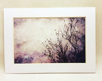 Bare Your Soul - Matted 4x6 print, Fine Art Photography, Nature Photography, Surreal Photography, Tree Photography