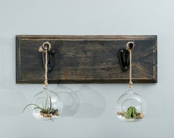 Rustic air plant display