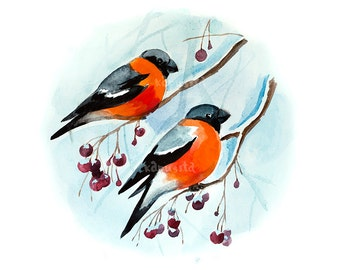 Bullfinches birds on branch Digital Download Art printable, blue and red birds watercolor art painting, art craft supplies