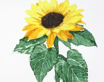 Watercolor Painting Original Not Print Sunflower 14022016020sBLSFYW