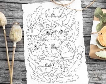Instant Download Floral Coloring Page: A digital coloring page for adults with poppies and leaves. Simple design perfect for a beginner.