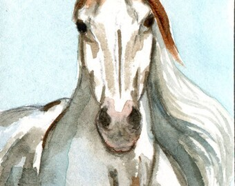 Medicine Hat Mustang Wild Horse Autumn Artwork  Miniature  llmartin Original ACEO Watercolor Country Free Shipping in USA