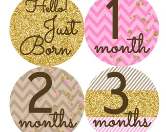 Baby Month Stickers, Monthly Baby Stickers, Baby Girl First Year Stickers, Baby Milestones, Baby Shower Stickers, Pink Gold Glitter 051G