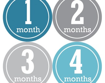 Baby Month Stickers, Baby Boy Gift, Milestone Stickers, Monthly Sticker, Monthly Baby Boy Stickers, Baby Month Milestone Stickers 163