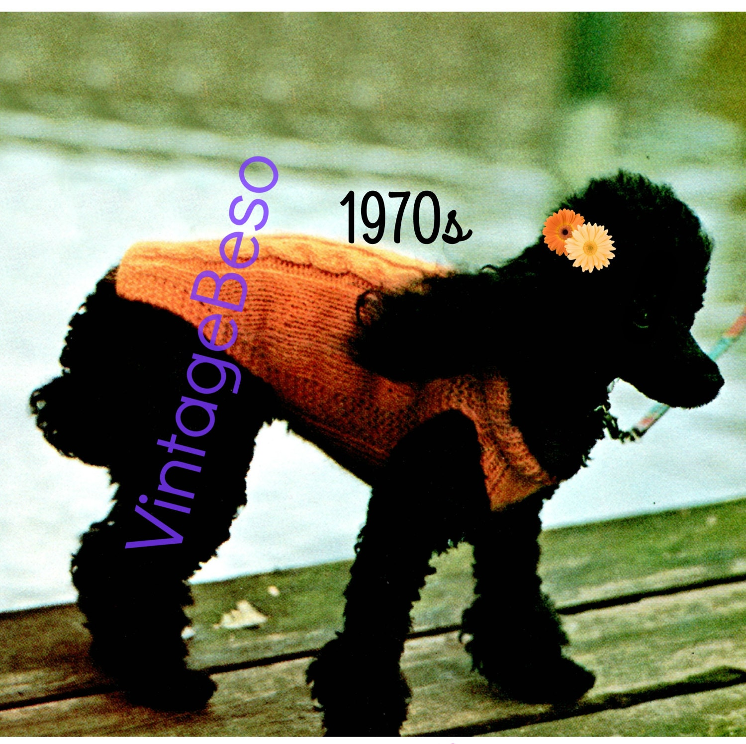 Cable Dog Sweater Knitting Pattern • Vintage 70s Knit Sweater ...