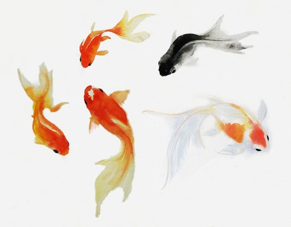 Art de poisson rouge poisson rouge aquarelle peinture sumie for Achat de poisson rouge