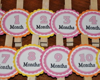 Pink Photo Clips. Photo Clips. Month Clips. Pink. Set of 13. Newborn-12 Months. First Birthday.
