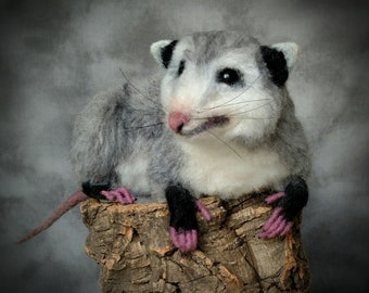Life Size Baby Opossum OOAK Needle felted by Bear Artist Stevi T.
