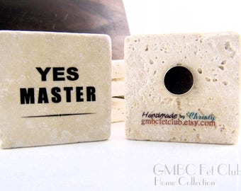 "Rare Earth Fet Magnet ""YES MASTER"""