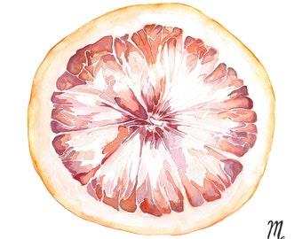 Citrus Art Print | Grapefruit Watercolor | Grapefruit Illustration | Farmhouse Kitchen | Kitchen Art | Food Illustration | Fruit Art