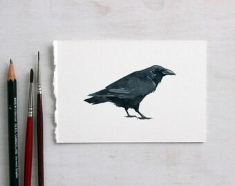 Common Raven Original Watercolor Painting, bird artwork
