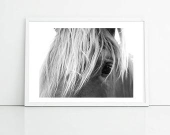 Horse Photography, Black And White Animal Photo, Art Print Photography Printable Art, Office Art