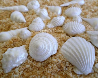 50 Edible Shells Fondant Cake Cupcake Decoration Topper Summer Beach Wedding  Birthday Mermaid Under the Sea Baby Bridal Party Candy Favor
