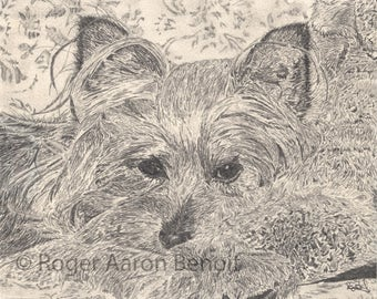 """For any dog lover....'Tuckered Out'  11"""" x 14"""" print"""