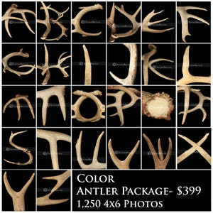 Qty - 1,250 Wholesale Antler Letter Art * Alphabet Photos * Mall Kiosks *  Craft Fairs * Vendor Shows * Retail Shops * Fast Free Shipping