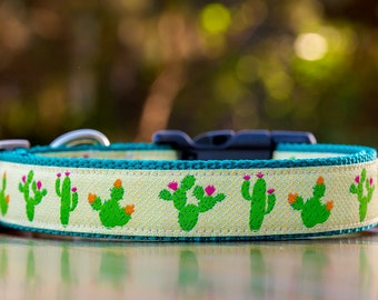 Cactus Dog Collar / Desert Dog Collar / XS- XL / Australian Made